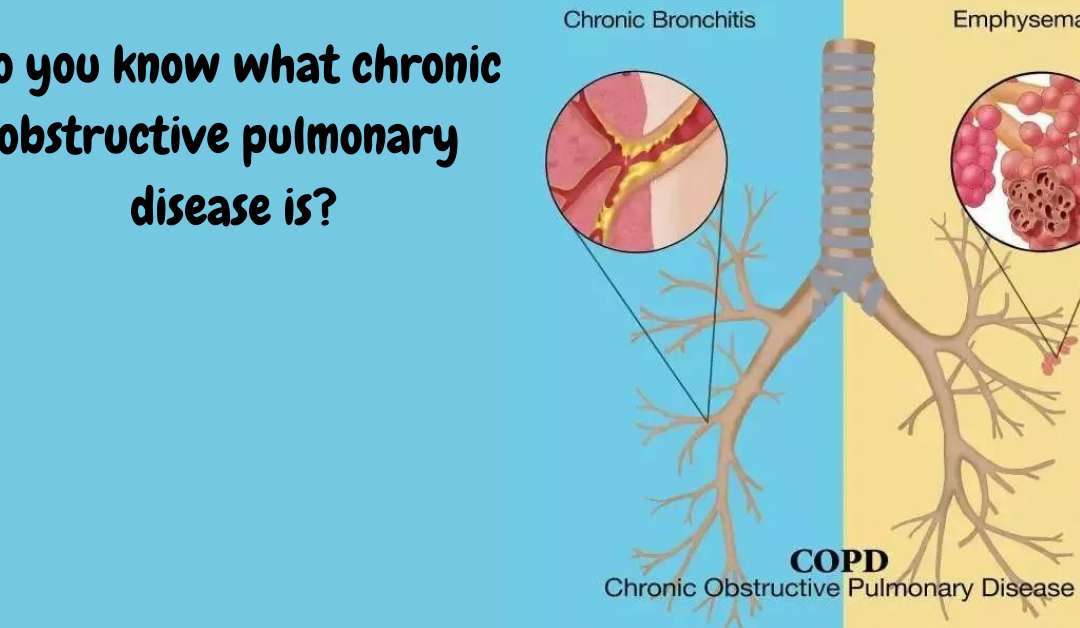 Do you know what chronic obstructive pulmonary disease is?